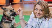 """""""Klan"""": Małgorzata Ostrowska-Królikowska świetnie się bawi w towarzystwie... suczki Lejli"""