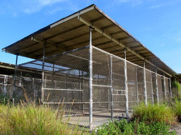 Klatki dla więźniów w nieczynnym obozie X-Ray /Inga Czerny  /PAP