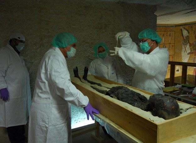 Klątwa to bzdura, ale środki ostrożności przy badaniu mumii nie zaszkodzą... /Discovery World