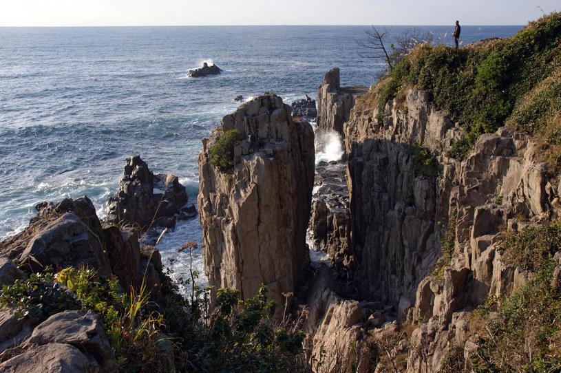 Klify Tojinbo - skok w taką przepaść oznacza pewną śmierć /Wikipedia /materiały prasowe