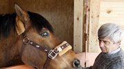 Klub Gaja przekazał szkole konia do zajęć z hipoterapii