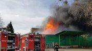 Kluczbork: Pożar hali magazynowej