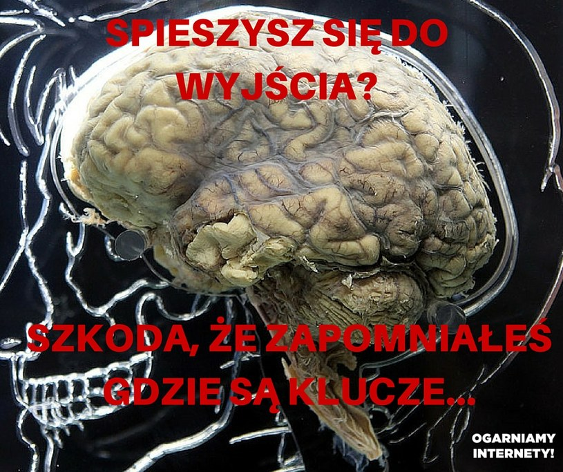 Klucze /INTERIA.PL