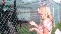 Kobieta podeszła do klatki z małpami. Finał?
