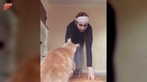 Kobieta stała się ofiarą kota. Nie był w nastroju