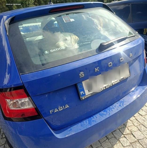 Kobieta zostawiła psa w samochodzie /Policja /