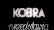 """""""Kobra""""- wieczory z dreszczykiem"""