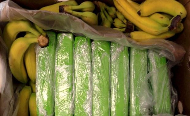 Kokaina w bananach trafiła do sklepów. Co ustalono do tej pory?