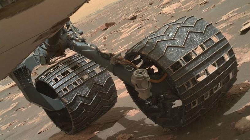 Koła łazika Curiosity /materiały prasowe