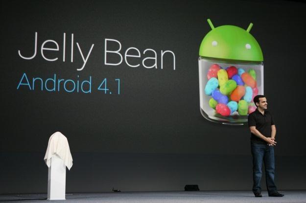 Kolejka chętnych po Androida 4.1 systematycznie rośnie /AFP