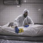"""Kolejna pandemia? Pytanie nie """"czy"""", a """"kiedy"""" nadejdzie"""