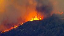Kolejne pożary w Kalifornii. Ludzie zmuszeni są do ewakuacji