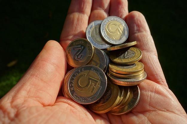 Kolejne przetargi w gminach kończą się podwyżkami opłat za odbiór odpadów /©123RF/PICSEL