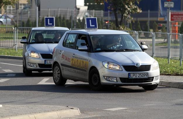 Kolejne zmiany w przepisach o prawie jazdy / Fot: Tomasz Rytych /Reporter