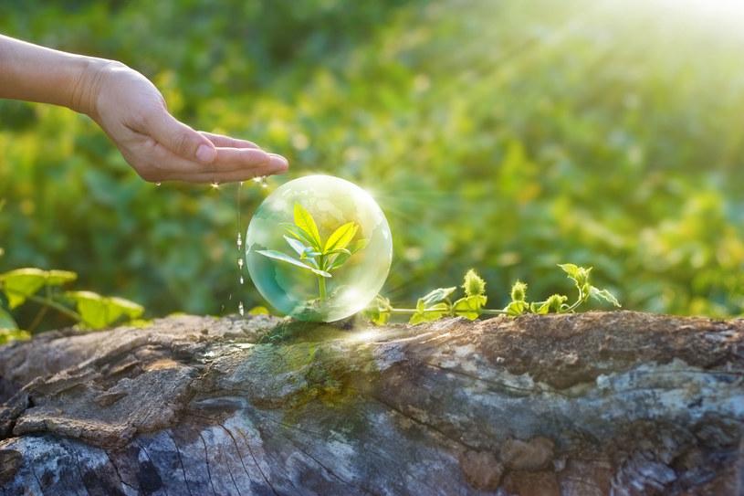 Dzień Ziemi 2021. Co możesz zrobić dla planety? - Kobieta w INTERIA.PL