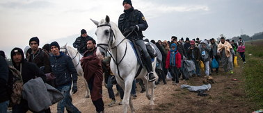 Kolejny kraj grodzi się przed uchodźcami. Austria zbuduje płot na granicy ze Słowenią