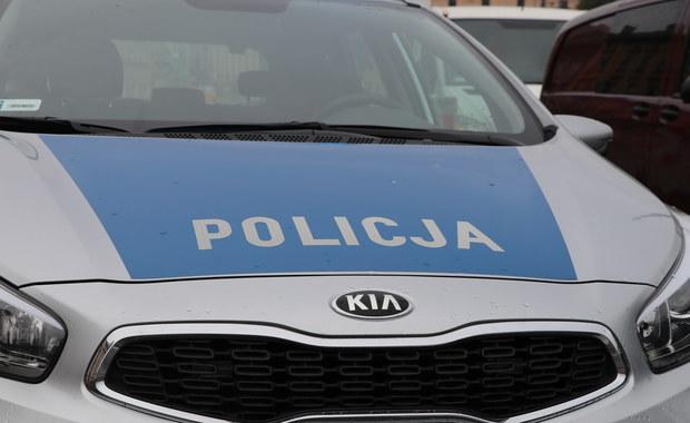 Kolizja dwóch radiowozów w Łodzi. W sumie na ulicy Wojska Polskiego zderzyły się cztery auta