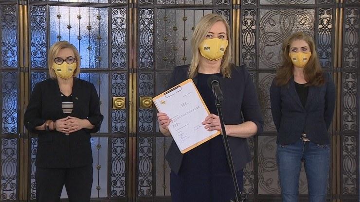 Koło poselskie będzie się składać z trzech posłanek /Polsat News