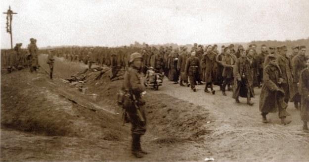Kolumna piechoty zmierzająca w kierunku Zambrowa, 13.IX.1939 r. (zb. J. Strenkowskiego) /Odkrywca