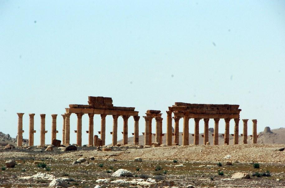Kolumnada wyznaczająca główną artylerię w starożytnym mieście /STR /PAP/EPA
