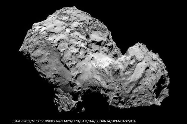 Kometa 67P/Czuriumow-Gierasimienko jest już od roku obserwowana przez europejską sondę Rosetta. /materiały prasowe