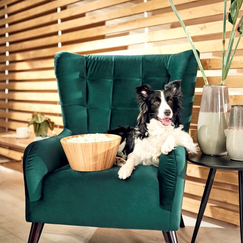 Komfortowy fotel to idealne miejsce do relaksu /materiały prasowe