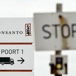 Komisja Europejska nie wyklucza zmiany wniosku ws. glifosatu