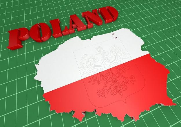 Komisja Europejska przedstawiła prognozy gospodarcze dla Polski /©123RF/PICSEL