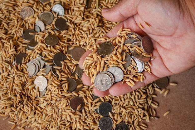 Komisja rolnictwa jest za finansowaniem składek rolniczych z budżetu /©123RF/PICSEL
