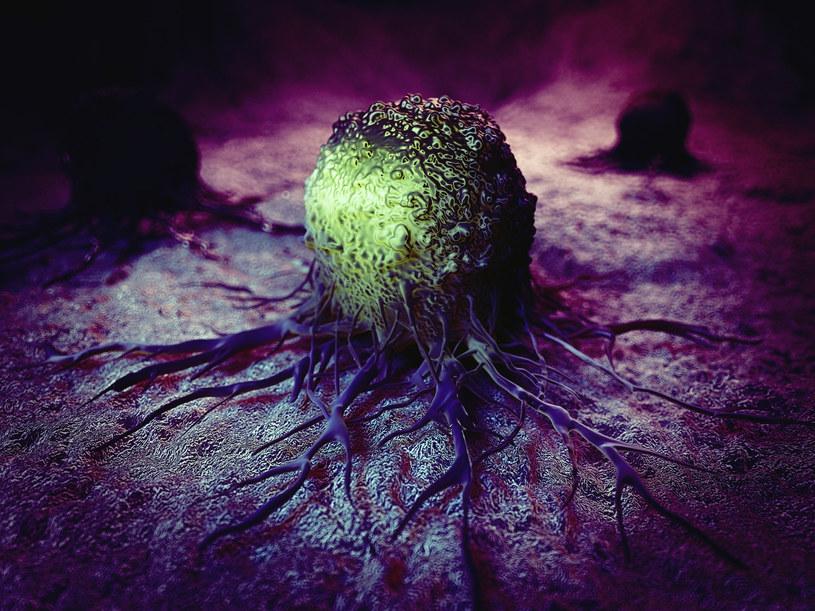 """Komórki nowotworowe nie zużywają cukru w """"normalny sposób"""" /123RF/PICSEL"""