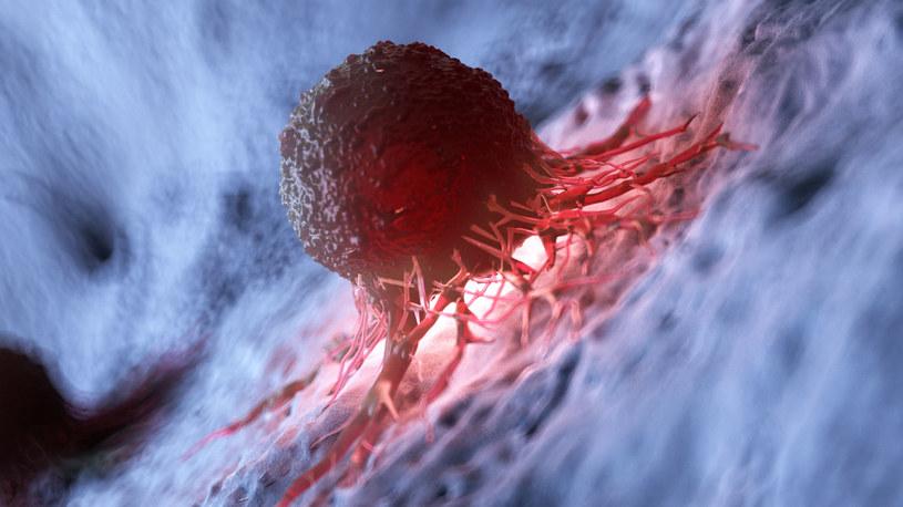 Komórki nowotworowe wpływają także na zdrowe tkanki /123RF/PICSEL