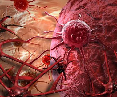 Komórki nowotworowe współpracują ze sobą