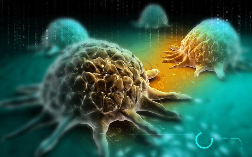 Komórki rakowe /123RF/PICSEL