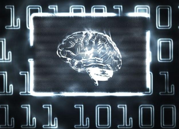 Komputery wkrótce będą sterować naszą pracą /123RF/PICSEL