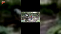 Koń taranuje jeźdźca! Nagranie mrozi krew