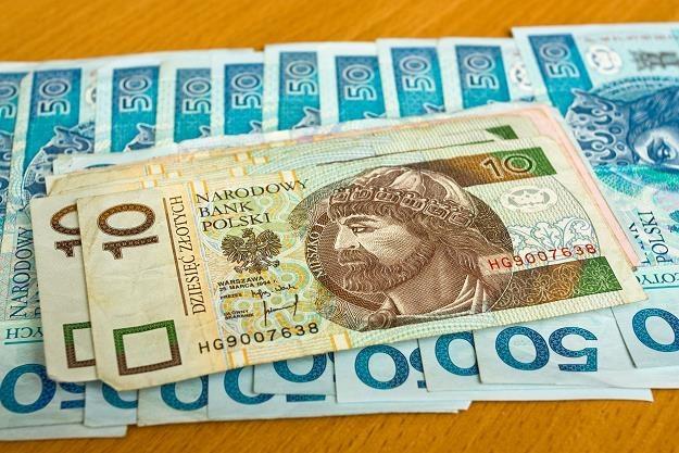 Koncepcja dochodu podstawowego staje się coraz bardziej popularna /©123RF/PICSEL