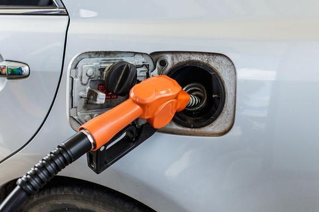 Koncerny petrochemiczne na razie nie tracą na tanich paliwach /©123RF/PICSEL