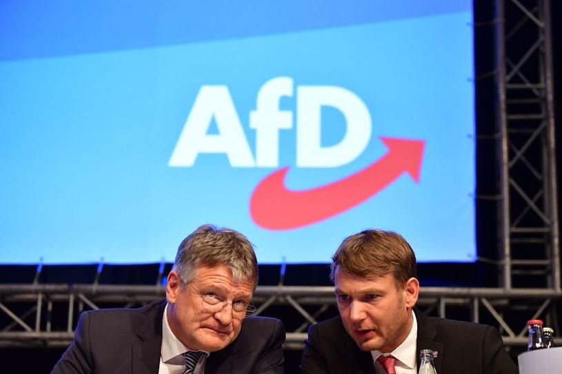 Kongres AfD /TOBIAS SCHWARZ/ /AFP