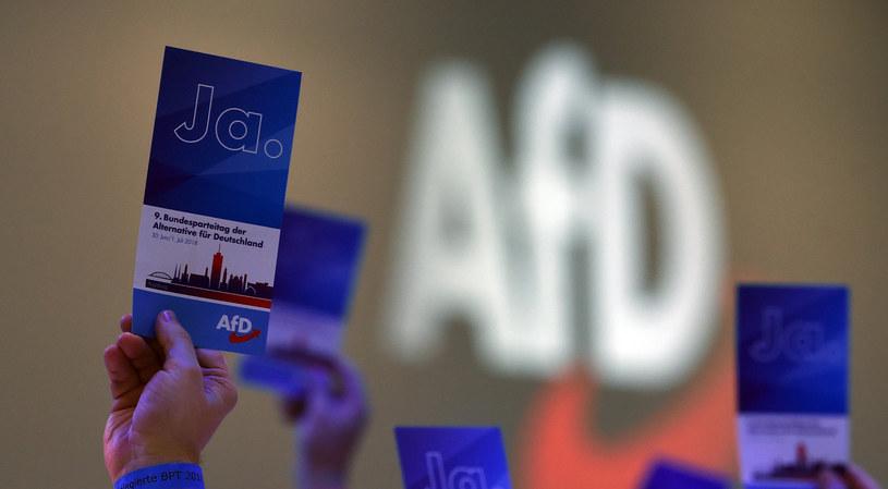 Kongres partyjny AfD /AFP