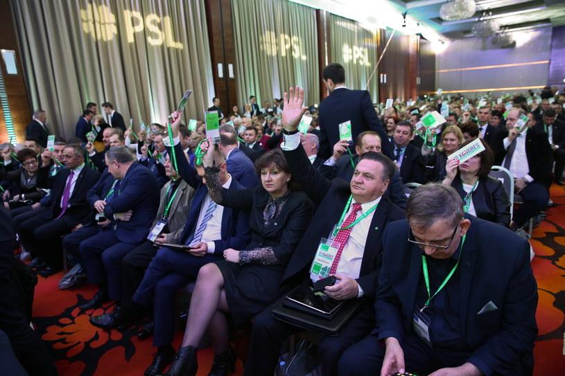 Kongres PSL /Rafał Guz /PAP