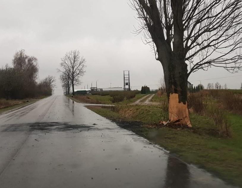 Końskowola - 19-latka zginęła w samochodzie, który spłonął po uderzeniu w drzewo /Lubelska Policja /