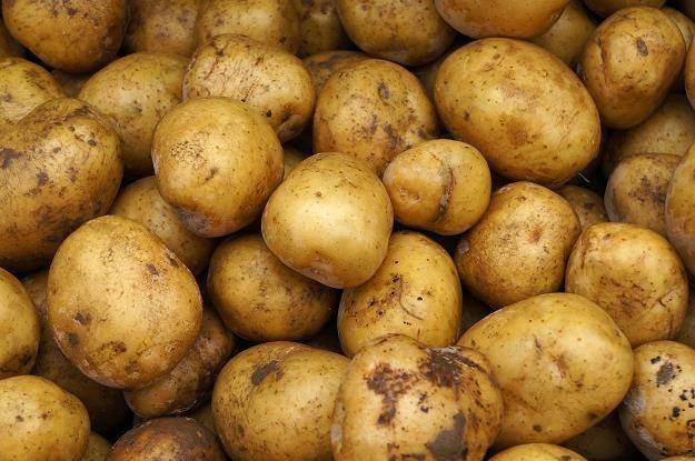 Konsumenci powinni znać pochodzenie ziemniaków /©123RF/PICSEL