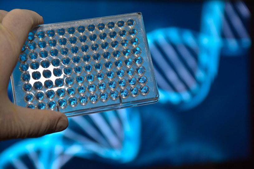 Konsumenckie testy genetyczne pozwalają na wykrycie predyspozycji do różnych chorób /123RF/PICSEL