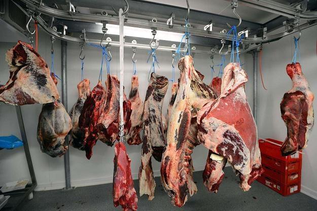 Kontrolerzy chcą uzyskać pełną informację na temat uboju zwierząt /AFP