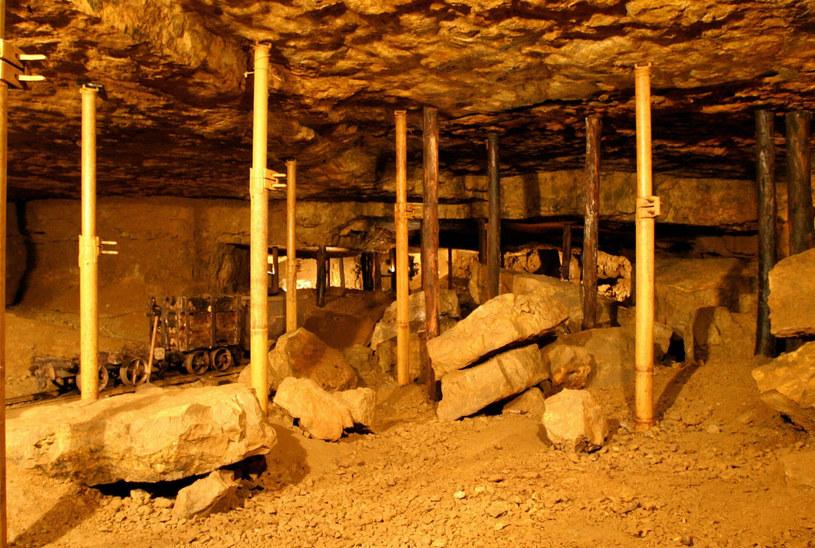 Kopalnia Srebra to całe podziemne miasto, obejmujące wąskie ścieżki, korytarze i fragmenty wodnych labiryntów /Wojciech Traczyk /East News