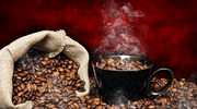 Kopi luwak: Najdroższa kawa świata. Z odchodów!