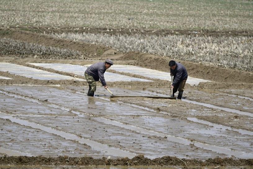 Korea Północna jest jednym z najbiedniejszych krajów świata /PAP/EPA