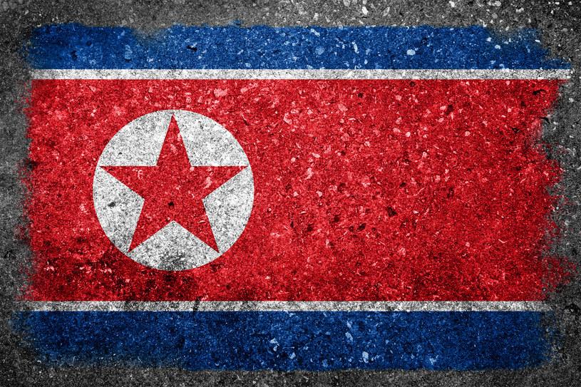 Korea Północna stała się w ostatnich latach jednym z największych światowych źródeł cyberzagrożeń /123RF/PICSEL