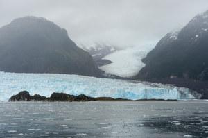 Koronawirus dotarł na Antarktydę. 36 przypadków zakażeń
