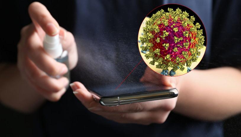 Koronawirus potrafi przetrwać na ekranie telefonu przez naprawdę długi czas /123RF/PICSEL